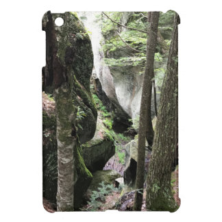 iPad case with beautiful picture of the woods