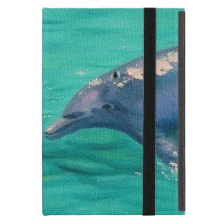 Ipad Dolphin Case