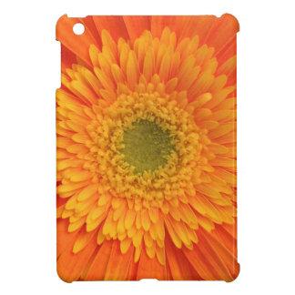 iPad mini case pretty in orange
