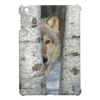 iPad mini case with pic of wolf in birch trees