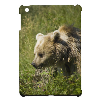 Ipad Mini QPC template iPad Mini Cove - Customized iPad Mini Cases