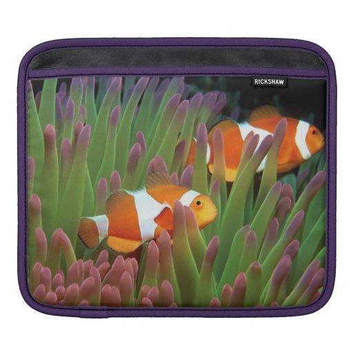 iPad Sleeve with underwater scene