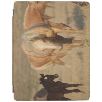 iPad Smart Cover HAPPY BABY ANIMALS MARE AND FOAL