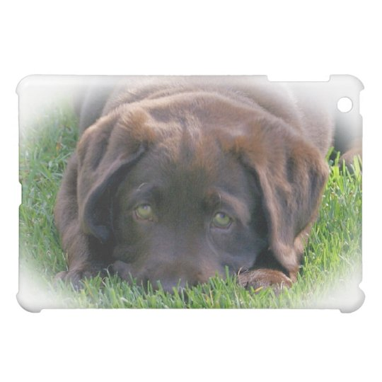 Ipad Smart Cover with Chocolate Lab Puppy Case