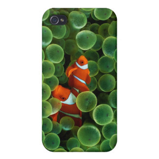 iPhone4 : Coral Reef iPhone 4 Cover