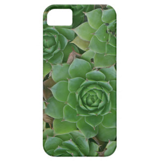 iphone5 case with housekeeper plant iPhone 5 case