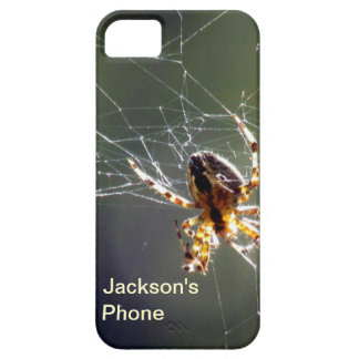 iPhone5 CM/BT - spider on web iPhone 5 Covers