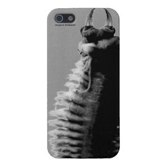 iPhone5 Nereis glossy cover iPhone 5/5S Cover
