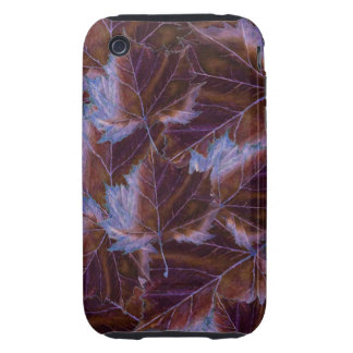 iPhone 3G/3GS Case leaves drawing Tough iPhone 3 Case