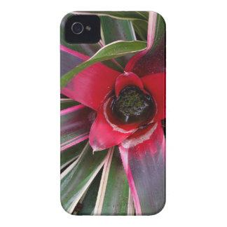 iPhone 4 Case - Vase Plant