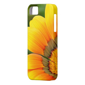iPhone 5/5S, Barely There - Bright Flower Macro iPhone 5 Cases