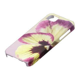 iPhone 5/5S Case - Burgundy Blotch Pansy