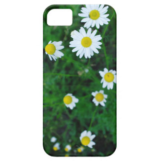 iPhone 5/5S Case daisies flowers