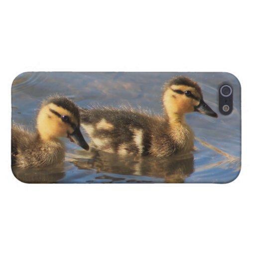 iPhone 5/5s case featuring baby Mallard image