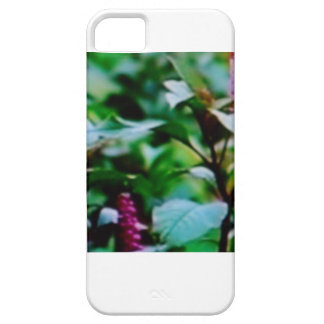 IPHONE 5/5S CASE - PURPLE GINGER FLOWER