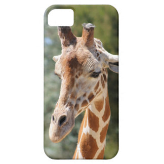 iPhone 5/5s case with giraffe image