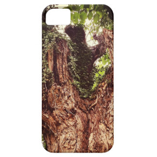 IPhone 5/5S cellular phone case iPhone 5 Covers
