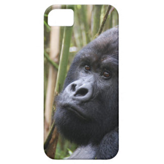 iphone 5 barely there qpc template ip - Customized Barely There iPhone 5 Case