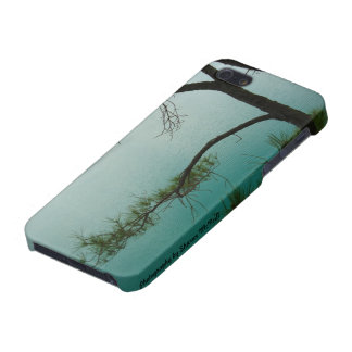 Iphone 5 case blue lake