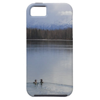 iPhone 5 Case - Ducks