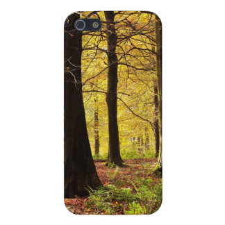 iPhone 5 Case - Fall Colors