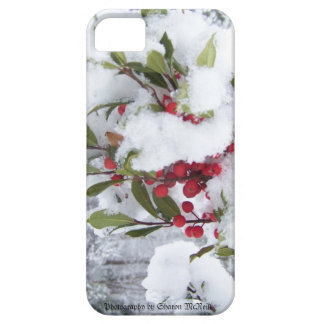 Iphone 5 case holly