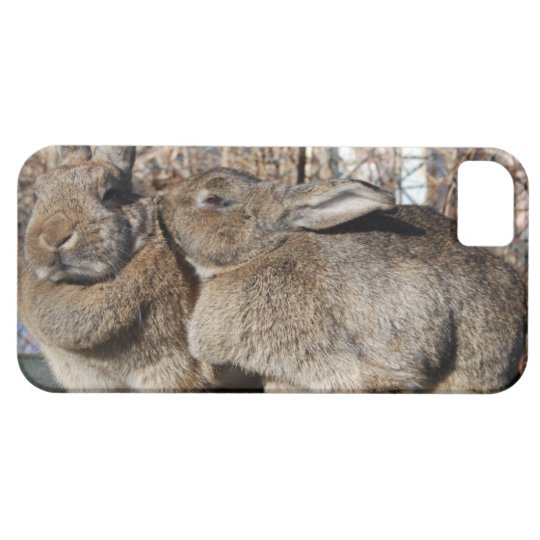 iPhone 5 case with bunnies smooching
