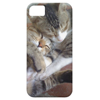 iPhone 5 case with kittens napping