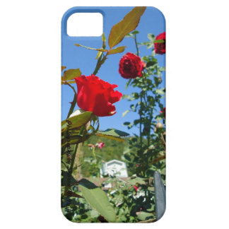 iphone  5 cases rose garden iPhone 5 cover