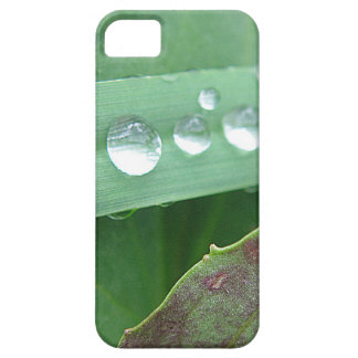 iPhone 5 covering water drop on broad blade of gra
