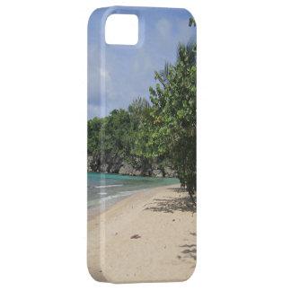 IPhone 5 Jamaica iPhone 5 Hülle