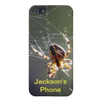 iPhone 5 Savvy - Spider on Web iPhone 5 Covers