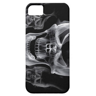 iPhone 5 Skull Cover iPhone 5 Cases