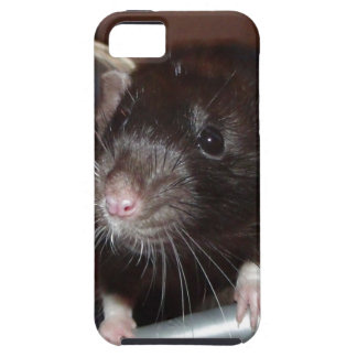 iphone 5 vibe case - black dumbo rat