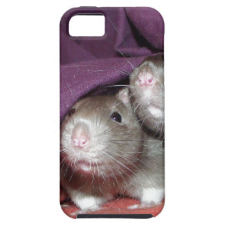 iphone 5 vibe case - rat noses iPhone 5 case