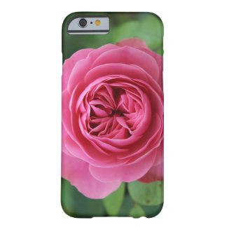 iPhone 6/6s, Barely There Macro Pinks Barely There iPhone 6 Case