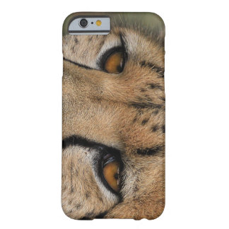 iPhone 6/6s, Cheetah Eyes Barely There Barely There iPhone 6 Case