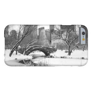iPhone 6 Case - Central Park New York City Winter