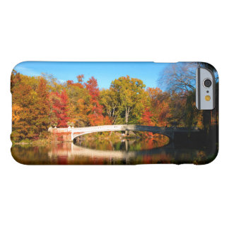 iPhone 6 Case - Central Park New York in Autumn
