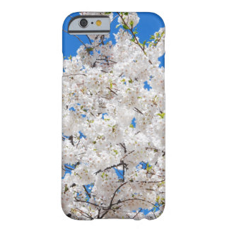iPhone 6 Case - Cherry Blossoms in Spring