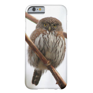 iPhone 6 Case - Northern Pygmy-owl Barely There iPhone 6 Case