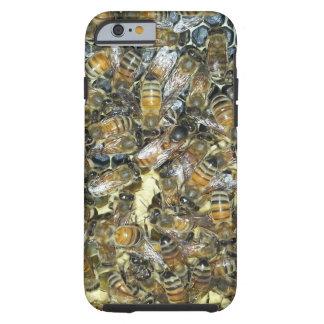 iPhone 6 Queen honey bee phone case Tough iPhone 6 Case