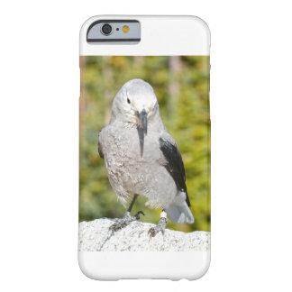 iphone 6S Bird Case White