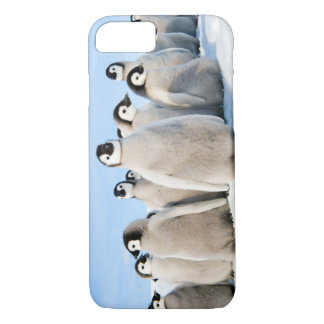 iPhone 7 Penguin Chicks iPhone 8/7 Case
