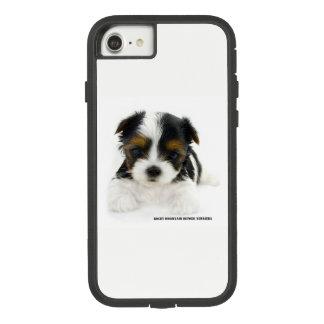 iPhone 8/7 Case - Biewer Terrier Puppy