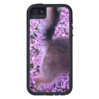 iPhone Case: Dog Tales iPhone 5 Covers