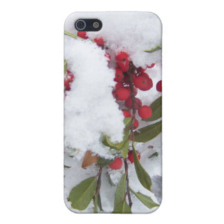 Iphone case Holly berries in the snow iPhone 5 Cover