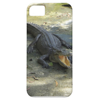 Iphone case! iPhone 5 covers