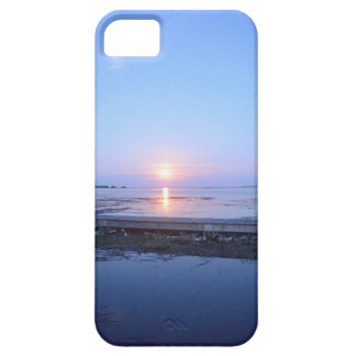 iPhone case with an image of the Night Sky &Marsh.