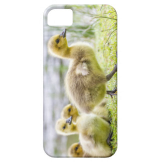 iphone case with baby gosling chicks very cute